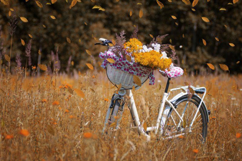 Moda, dizajn, marka i jakość, czyli rozważania na temat idealnego roweru